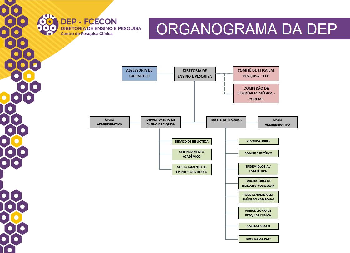 Organograma - Imagem