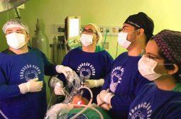 FCecon oferece cirurgia inovadora sem cicatriz contra câncer de tireoide